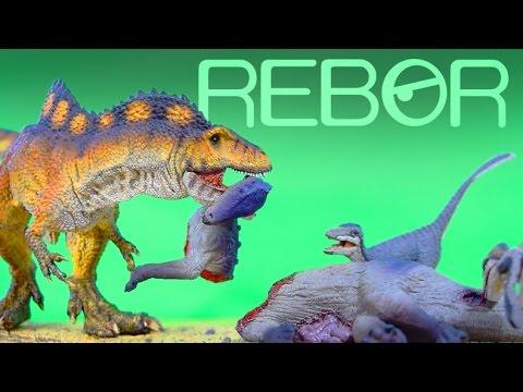REBOR®