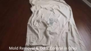 Ohio Area Mold Removal and Odor Control Service