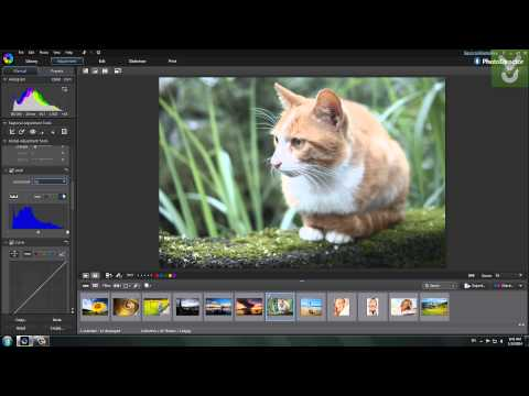 CyberLink PhotoDirector - Manage, adjust, and edit photos - Download Video Previews