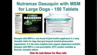 Nutramax Dasuquin With Msm For Large Dogs - A New Breed Of Joint Health Supplement - 150 Tablets