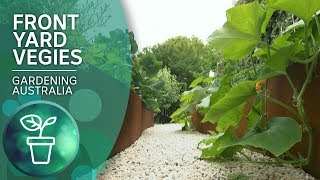 Growing Vegies In Style In A Small Space Garden