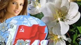 1 Мая - праздник весны и труда! Красивое видео-поздравление!