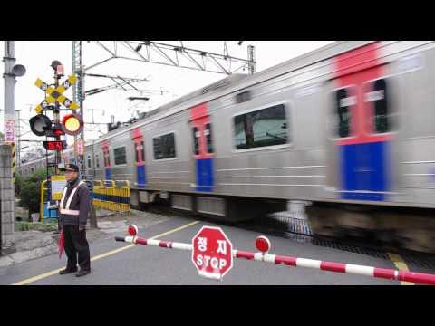 백빈건널목을 통과하는 덕소행 열차 - Jungang L
