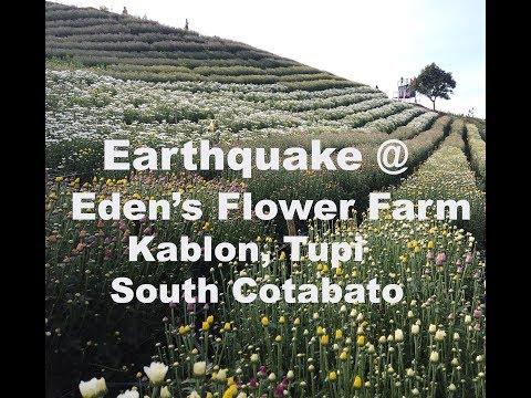 Eden's Flower Farm Kablon Tupi South Cotabato