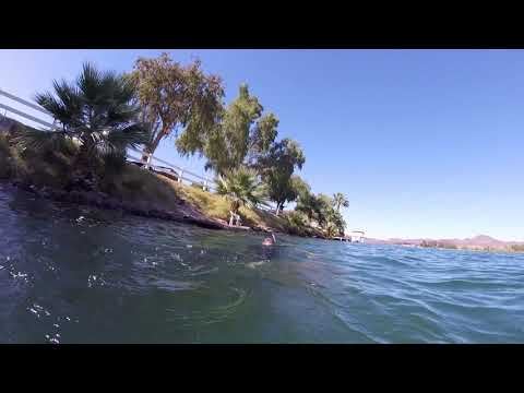Snorkeling And Fishing Underwater In Parker, AZ.