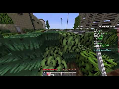 The Walking Dead Minecraft Server