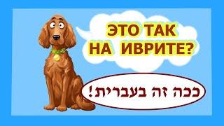 Так это на иврите /ככה זה בעברית/ Выпуск 1