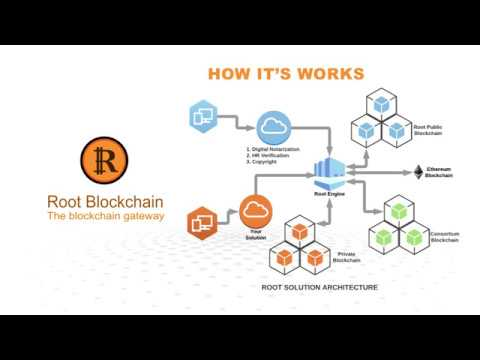 Root Blockchain - The First Hybrid Blockchain with Flexible Option