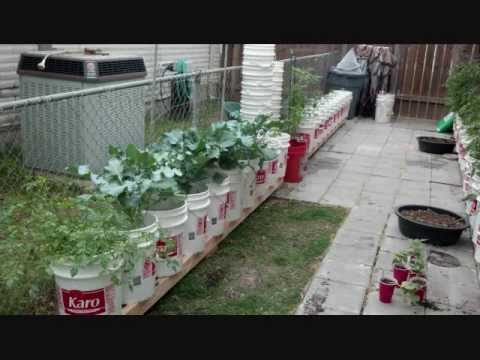 Check Out Our Self Watering Rain Gutter Grow System Group