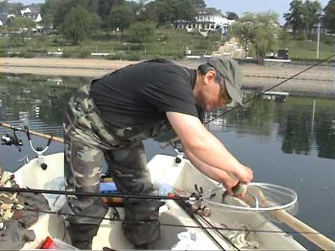 ловля сига в озерах карелии