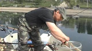 Ловля Сига (Renke) на озере Зорпе (Sorpesee)
