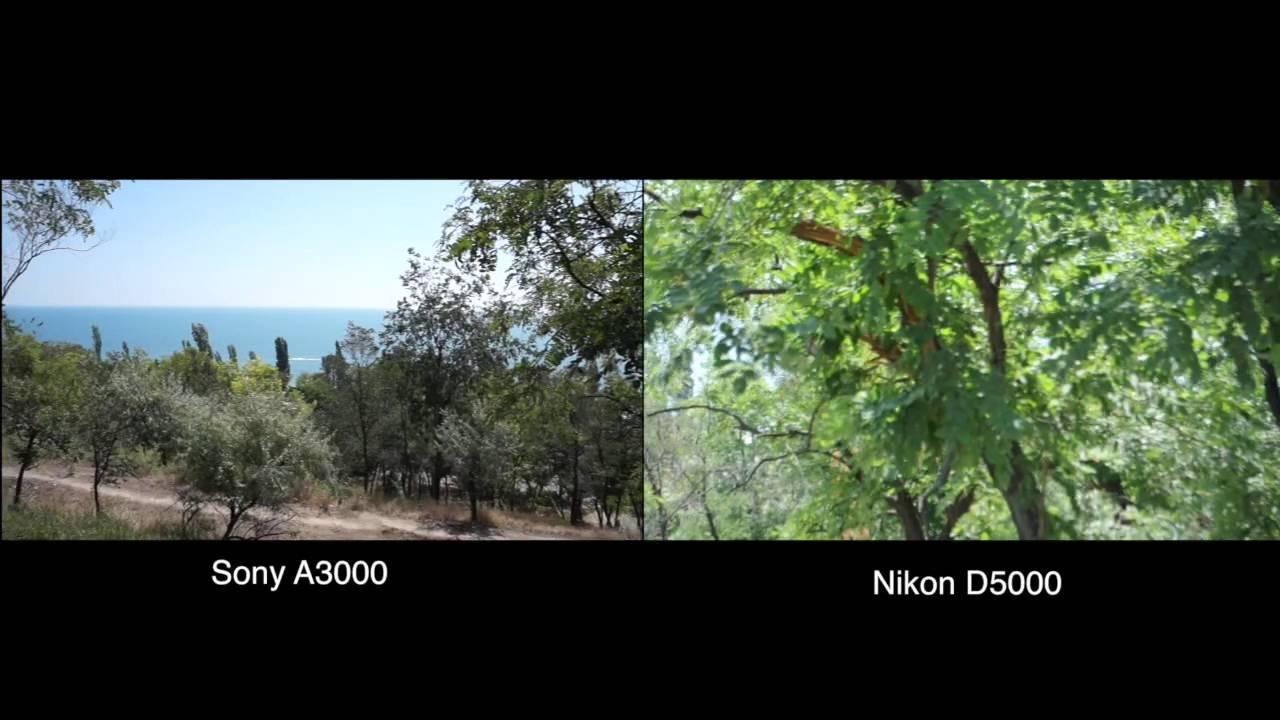 sony a3000 vs nikon d5000 youtube