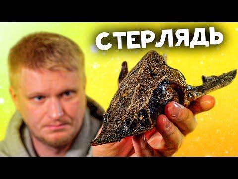 РЮМОЧНАЯ №1 спустя два года! 200 грамм рыбы за 2200 рублей. Славный Обзор.