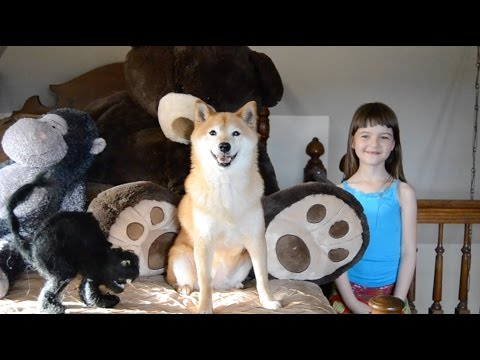 The Jungle Book: a movie review by 7-year-old MissObservation