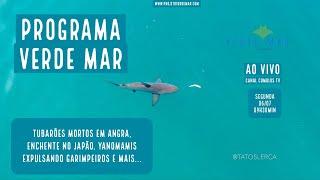 Notícias Socioambientais - Dia 06 de julho - VERDE MAR AO VIVO #37