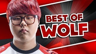 Best Of Wolf - Best Support World | League Of Legends