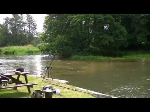 2014 07 18 River Kennet, Aldermaston Mills