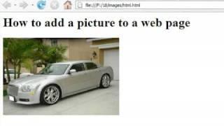 كيفية إنشاء صفحات ويب باستخدام HTML : كيفية إضافة صورة إلى صفحة ويب