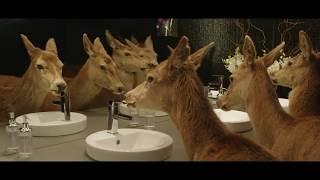 Креативная реклама пива с участием животных(Смешная реклама пива. Подборка оригинальных, смешных забавных роликов пива, которые никогда не будут показ..., 2013-02-18T13:22:55.000Z)