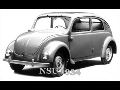 evolution theory  beetle youtube