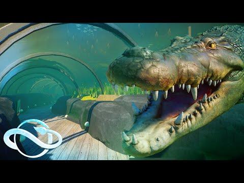 Saltwater Crocodile Habitat With Underwater Tunnel 🌊 | Planet Zoo Speed Build  Aquatic Pack