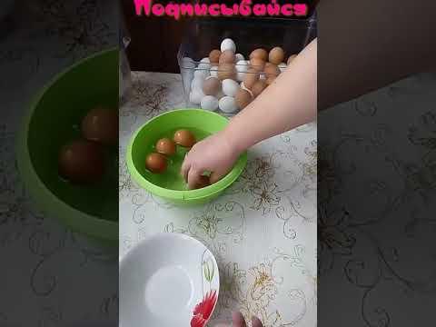 Монетка яйца s t 5 t 3