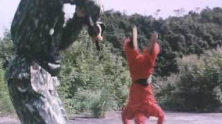 Godfrey Ho's Ninja the Protector (2)