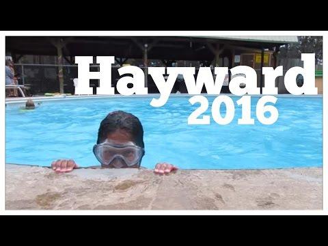 Hayward 2016
