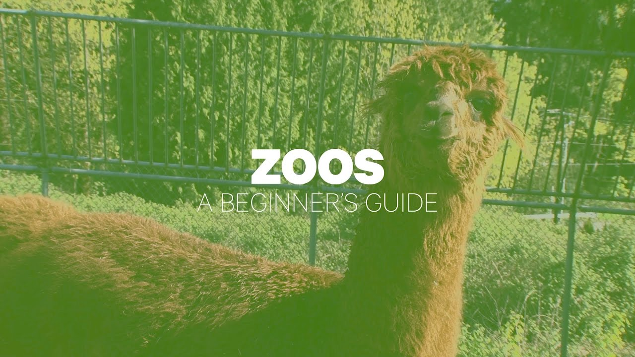 Los Angeles Zoo Discount Tickets Deals Up To 70 Off Groupon