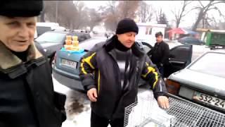 СМОТРИ - не пропусти! Луганск выставка голубей 03.02.2018