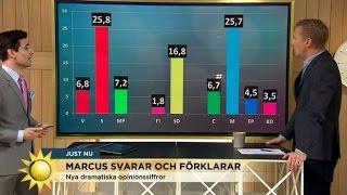 Marcus svarar och förklarar: Tror Fi kommer in riksdagen nästa val - Nyhetsmorgon (TV4)
