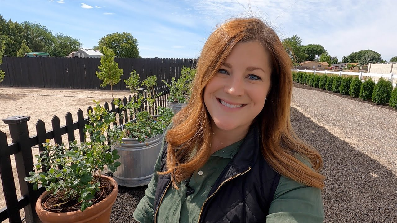 Growing Blueberries in Containers! 💙🤤 // Garden Answer