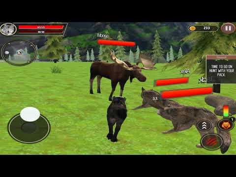 🐺Wolf Family Simulator, Magic Quest, Jungle Life