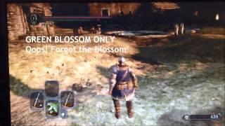 Cloranthy Ring & Green Blossom effect stacking test - Dark Souls 2