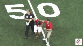 Anthony Schlegel Tackles Fan on Field