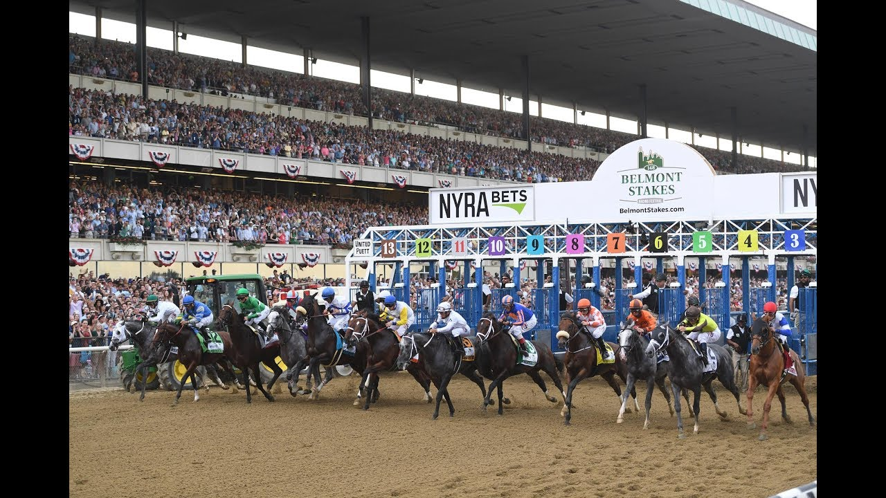 How I'd Bet $100 On The Belmont Stakes