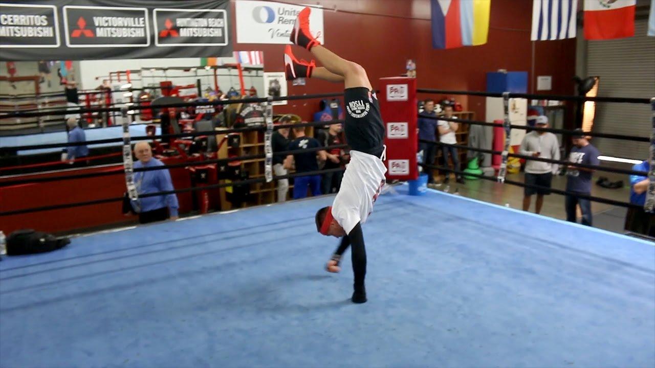 puma boxe