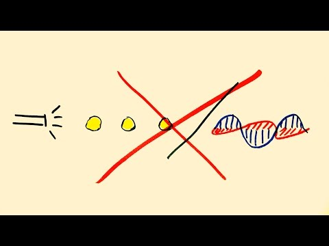 Wave Particle duality is Wrong