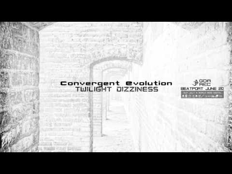 Convergent Evolution - Twilight Dizziness (goaLP033 - Goa Records)