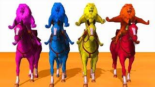 Farben Lion Reiten Pferde-Farben-Karikatur Für Kinder - Lernen Farben, Tiere Für Kinder