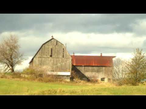 Rural King, King, Ontario