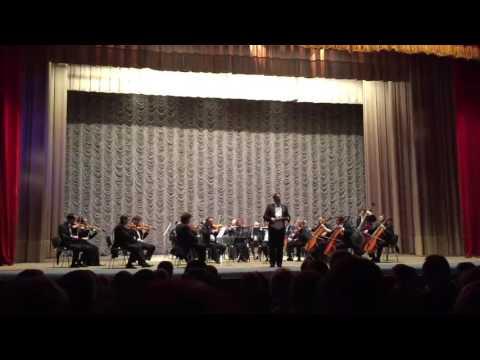 Vienna Strauss Philharmonic Orchestra Kyiv 2016 Live