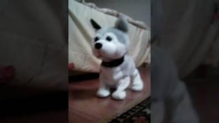 Хаски Рэкс- электронная собака.