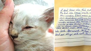 Cat returns home with a note attached to his collar, the owner then realizes what the neighbor has d