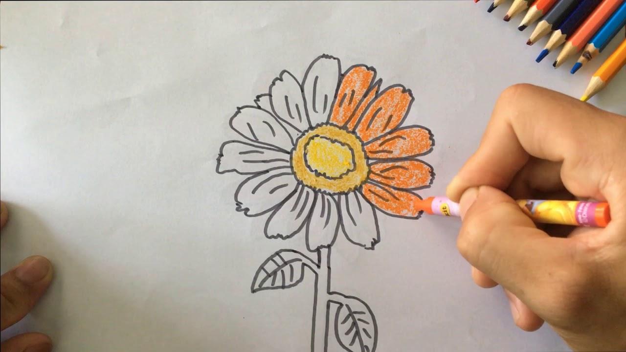 Học cách vẽ hoa mùa xuân cho trẻ – Coloring flower and gardening