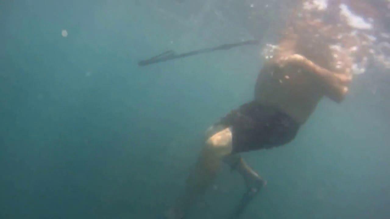 Spear fishing sheepshead at cape lookout nc jetties shark for Shark fishing nc