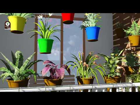 Gardening Ideas for Balcony / Terrace at Low Cost in India - Creative Garden
