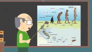 Teoria de la evolución explicada magistralmente