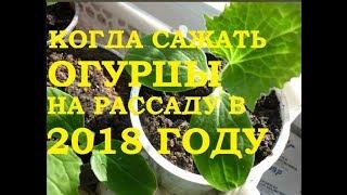 видео Календарь посадок на 2018 год для Сибири