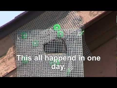 $5 homemade squirrel exclusion device works much better than $175 one I bought